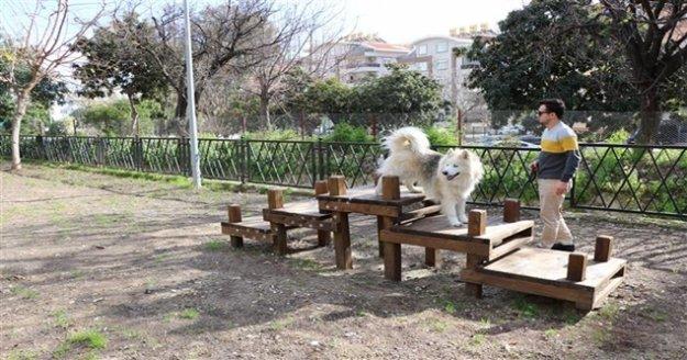 Alanya'nın ilk köpek parkı hizmete açıldı