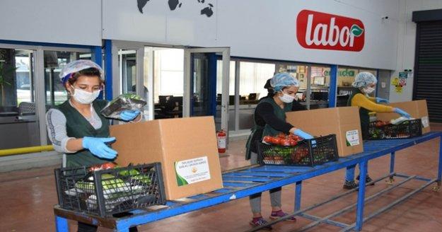 Kalkınma Kooperatifinden ihtiyaç sahiplerine sebze desteği