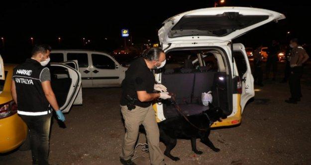 250 polisle şok narkotik uygulaması
