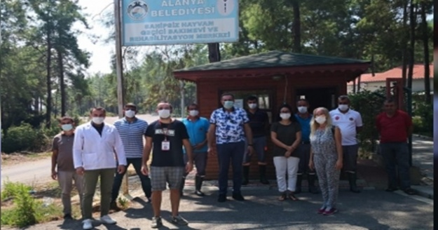 Alanya Belediyesi 1 ayda 212 hayvanı tedavi etti