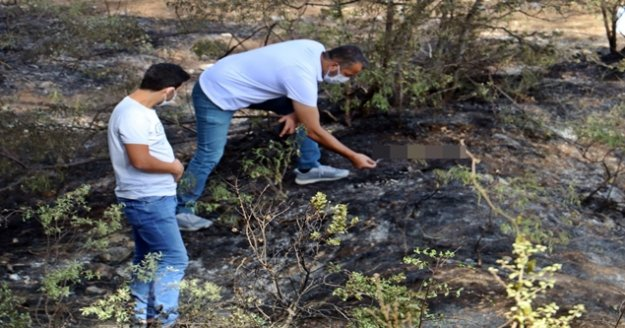 Ormanlık alanda yangın sonrası yanmış ceset bulundu
