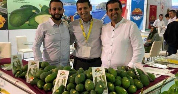 Sevilgen: Ülkeye Avokado yetmiyor