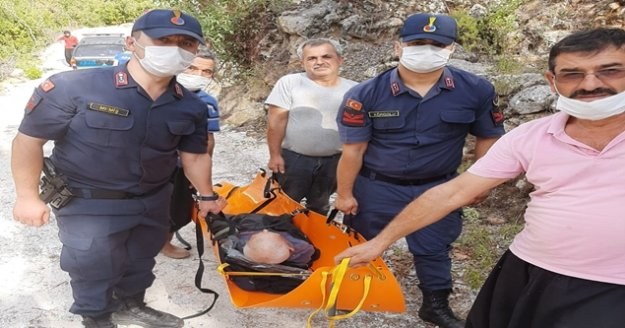 Alanya#039;da kayıp yaşlı adamı jandarma buldu