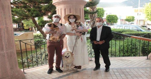 Alanya'da veteriner çiftin nikahında davetlilere nikah şekeri yerine kedi-köpek maması