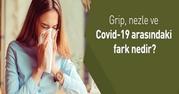 Korona virüsü nezle, grip ve alerjiden ayırt etme yolları