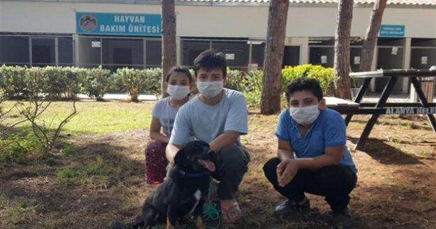 Gençler hayvan sevgisini Alanya Belediyesi ile öğreniyor