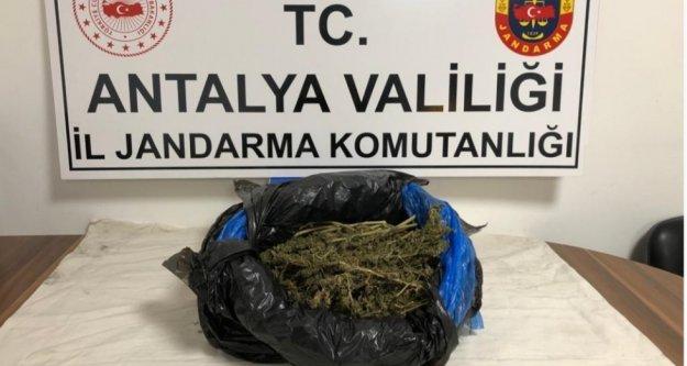 Alanya'da otobüs terminalinde uyuşturucu operasyonu