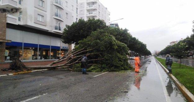 Antalya'da ekiplerin fırtına ve yağmur seferberliği