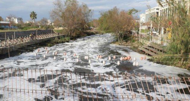 Binlerce balığın ölümüyle ilgili 4 tesise ceza