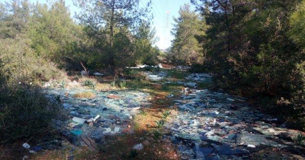 Ormanlık alanı çöplüğe çevirdiler