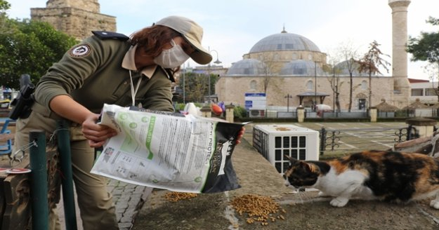 Polis ekipleri sokak hayvanları için günde 50 kilo mama dağıtıyor