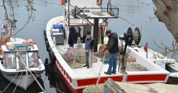 Balıkçıların korkulu rüyası 10 yıl sonra geri döndü!