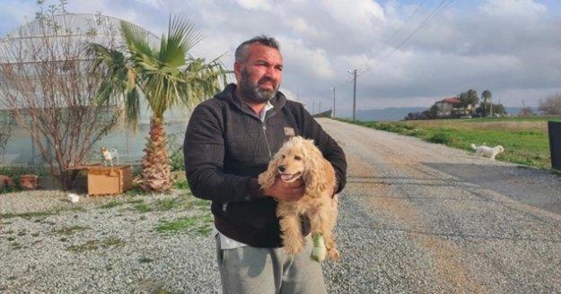 Elinde tüfekle köpeği kovalarken yakalandı, köpek sahibine etmediği hakaret kalmadı