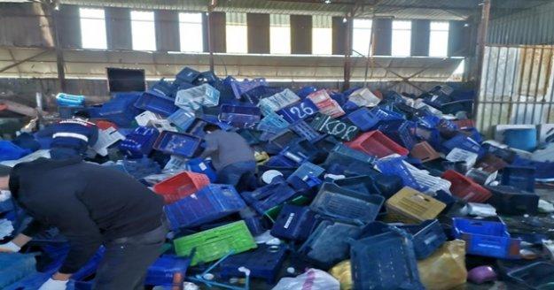 Plastik kasa hırsızları suçüstü yakalandı