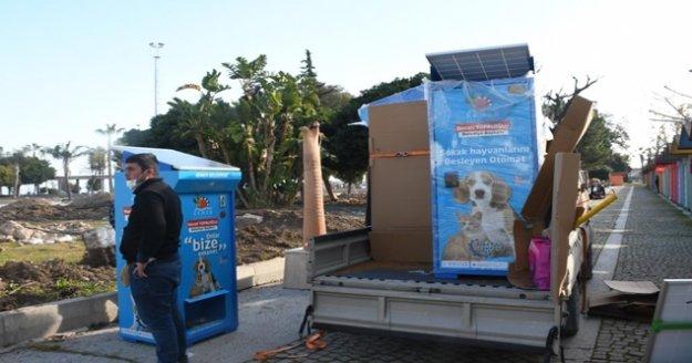 Sokak hayvanları için güneş enerjisiyle çalışan mamamatikler kuruldu