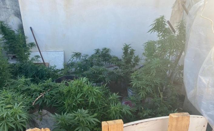 Alanya'da  eş zamanlı uyuşturucu operasyonu: 14 gözaltı