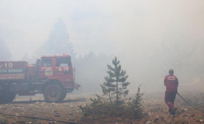 Alanya'da yayladaki orman yangınının bilançosu belli oldu