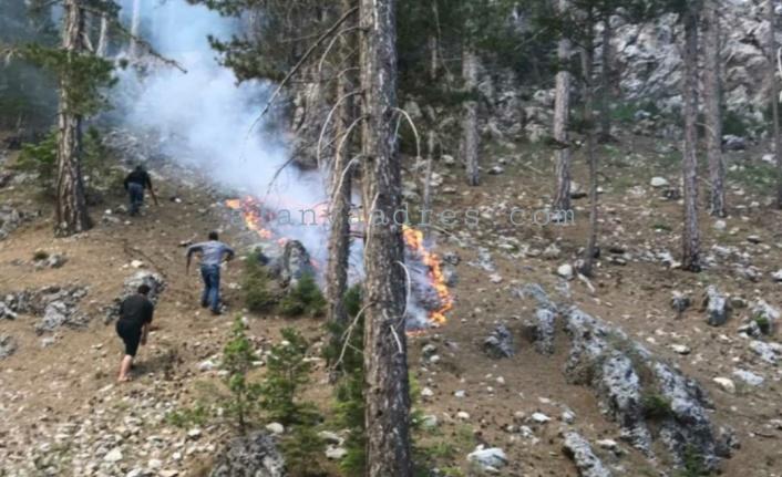 Alanya'nın yaylasında korkutan yangın