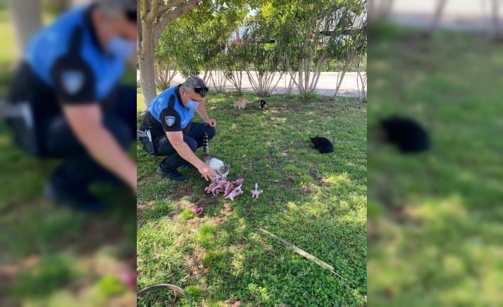 Polislerden sokak hayvanlarına su ve mama desteği