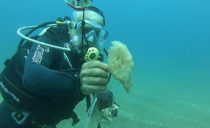 Tam kapanma deniz canlılarına nefes oldu