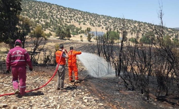 Antalya'da arazi yangınında 60 dekar ekili alan zarar gördü