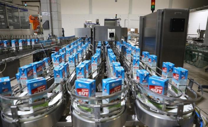 Halk Süt projesi kapsamında 565 bin litre süt dağıtıldı