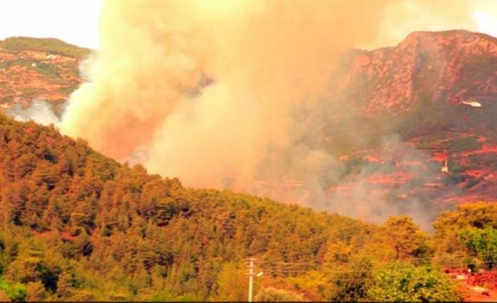 Alanya'daki yangına başsavcıdan soruşturma