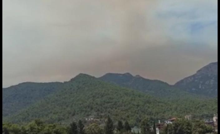Gündoğmuş yangını Alanya sınırına dayandı