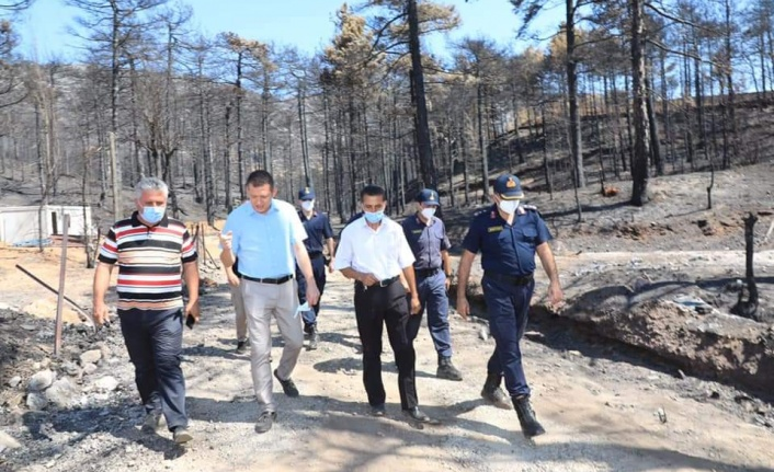 Alanya'nın yangın bölgesinde yaralar sarılıyor