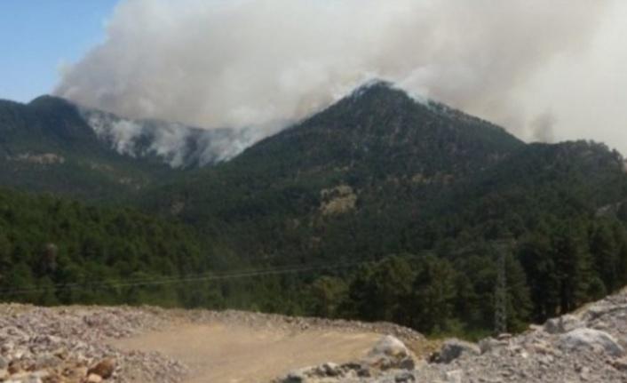 Alanya'ya düşen yıldırım ormanda yangın çıkardı
