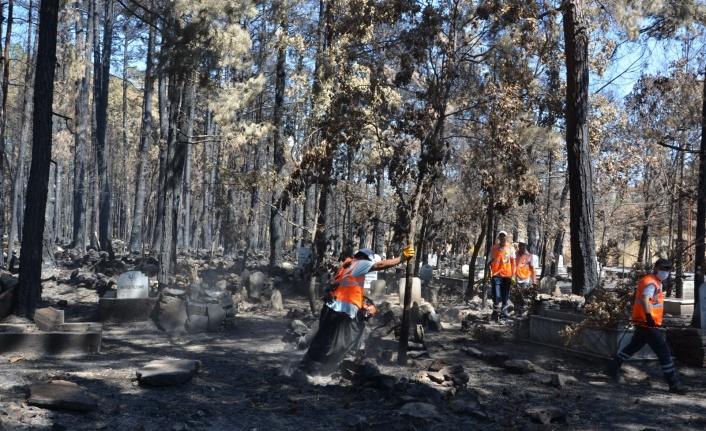Antalya Büyükşehir mezarlıklarda yangının izlerini silmeye çalışıyor