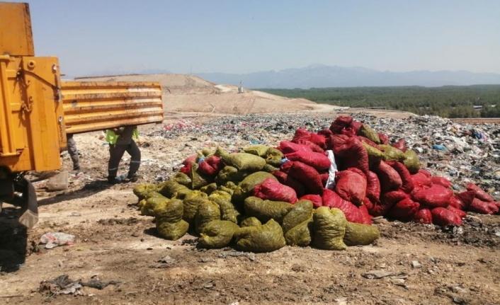 Antalya'da 4 ton kaçak midye ele geçirildi