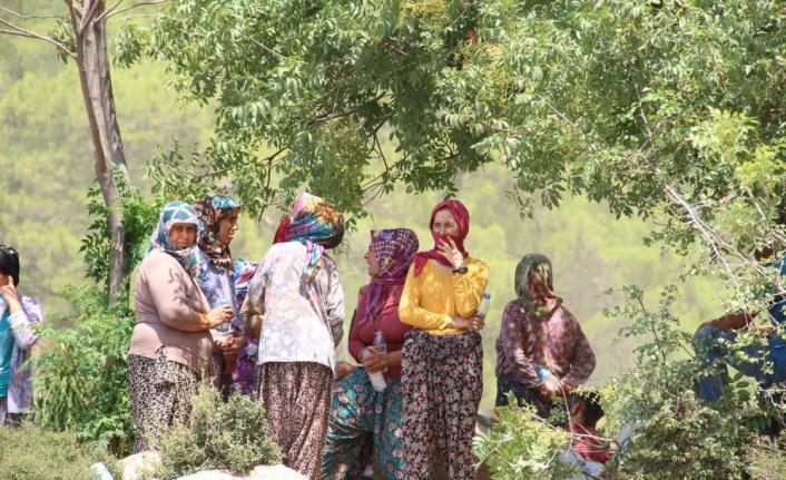 Antalya'da alevler bir mahalleye daha yaklaştı, ekipler teyakkuza geçti