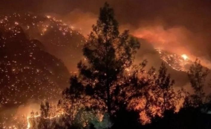 Güzelbağ ve Gündoğmuş yangınlarında son durum