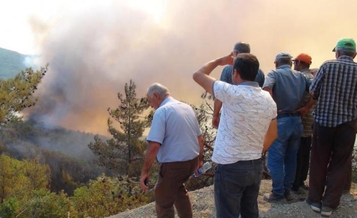 Mahalleye sıçrayan orman yangını muhtarı gözyaşlarına boğdu