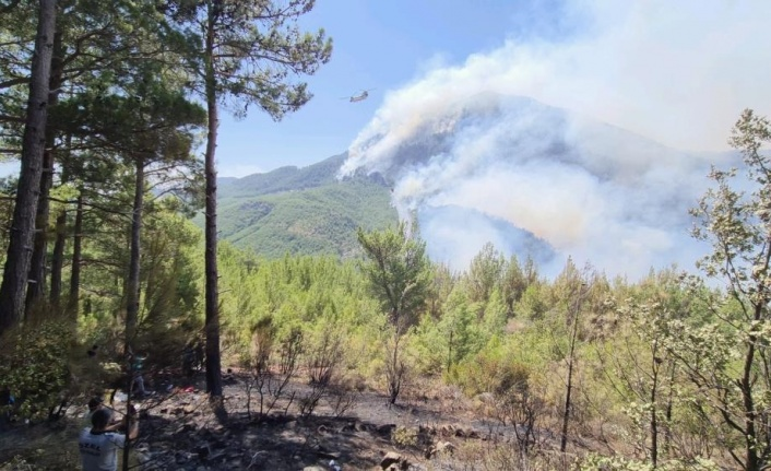Rüzgarın da etkisi ile Güğlen Dağında yangın etkili oluyor