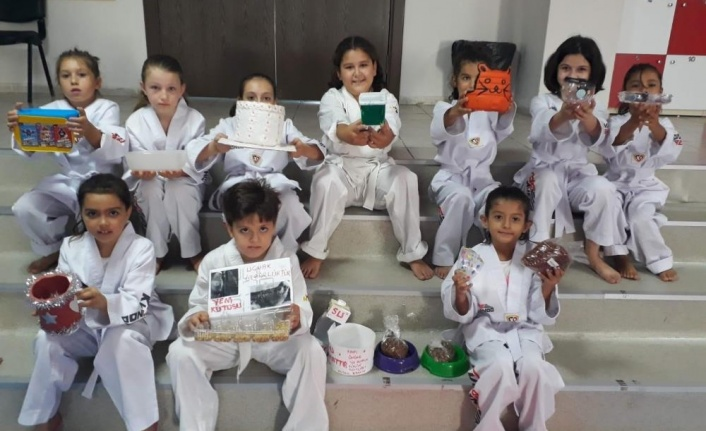 Tekvando öğrencileri, sokak hayvanları için mama kabı yaptı