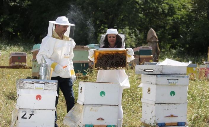 Ülke genelindeki orman yangınları arıları ve arıcılığı tehdit ediyor