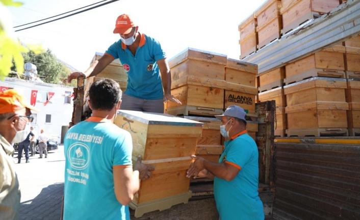 Alanya'da yangında kovanları zarar gören 23 arıcıya ücretsiz 350 arı kovanı dağıtıldı