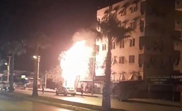 Alev alev yanan palmiye ağacı mahalleliyi korkuttu