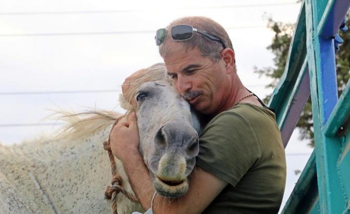 Atı çalınan eşinin üzüntüsüne dayanamayan emekli polis, muhbirle atı buldu
