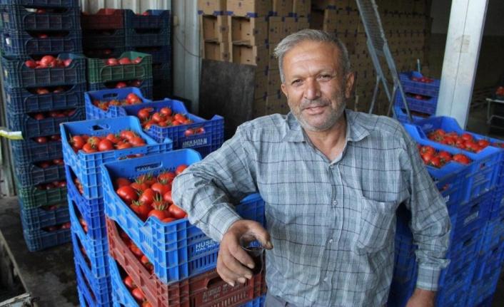 Domates ve biber üreticisinde Rusya sevinci