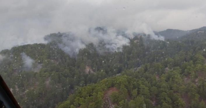 Düşen yıldırım orman yangınına sebep oldu