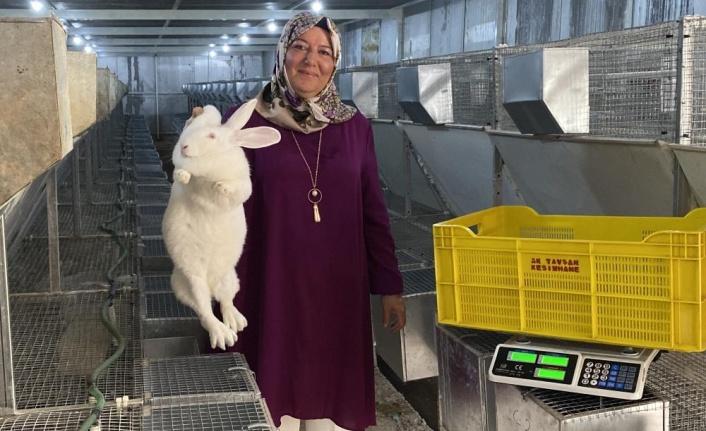Emekli kadın polis hobi olarak başladığı tavşan üretiminde devlet desteğiyle büyüdü