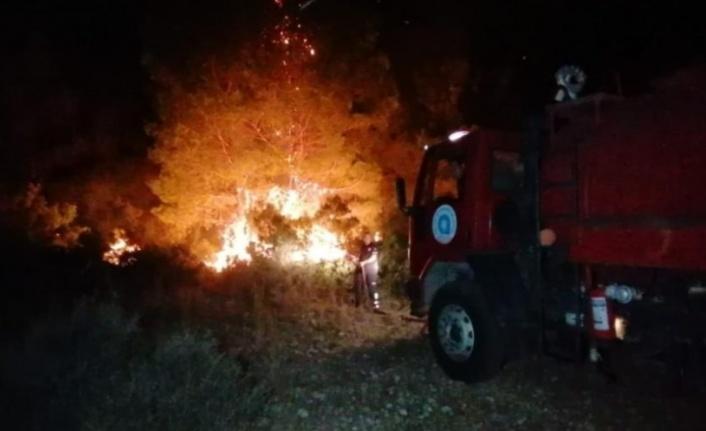Manavgat'ta gece korkutan orman yangını
