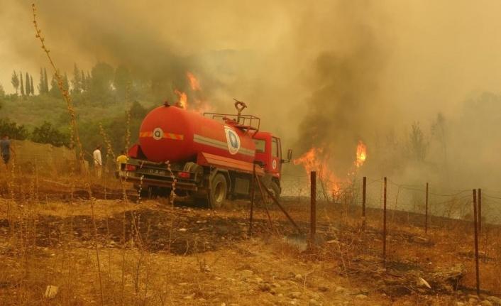 Alanya'da ormanlık alanlara giriş yasağı uzatıldı