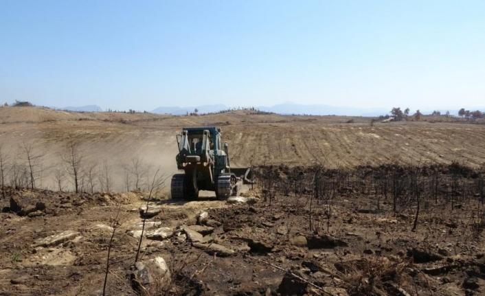 Yanan ormanlık alanlar iş makineleri tarafından dikime hazırlanıyor
