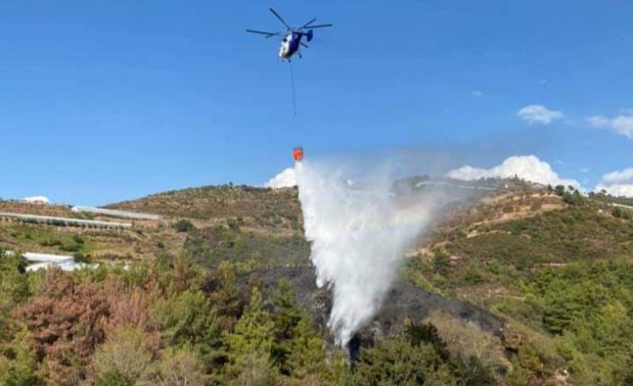 Alanya'da 2 noktada korkutan yangın