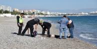 Sahilde bulunan kadın cesedinin kimliği belirlendi