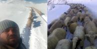 Kar savaşını koyunlar kazandı